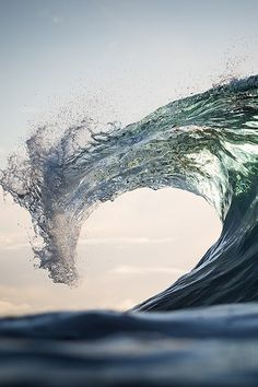Sea Dragon by Warren Keelan