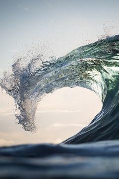 Sea Dragon by Warren Keelan//