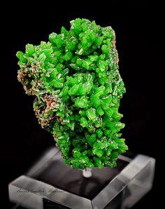 Pyromorphite   Barras-Gautier-Min. Minions, Minerals, Collections, Herbs, Crystals, The Minions, Herb, Minions Love, Minion Stuff