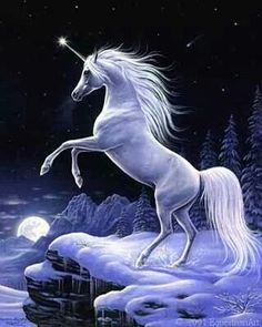 another Unicorn idea for my back