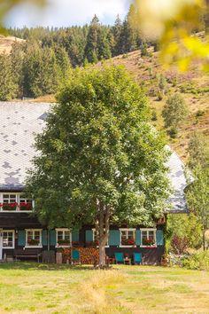 Bauernhaus in Menzenschwand im Schwarzwald © Hochschwarzwald Tourismus | Mein schönes Land bloggt