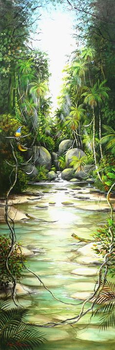 Ian Stephens - Kingfishers and Sunbirds in the Rainforest