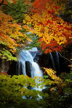 Autumn in Ryūzu Falls, Nikko,Tochigi, Japan