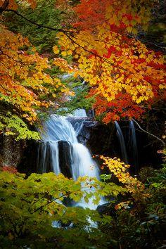 Autumn in Ryūzu Falls, Nikko,Tochigi, Japan