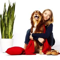 Amanda Seyfried, on a hiatus from movies at the moment, is spending her time pampering her two adorable pets! The recently turned 30-year-old was last seen on the silver screen in Love the Coopers in which also she didn't play a major part. However, it's all forgivable given that she ...