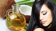 Os 13 Benefícios do Óleo de Coco Para o Cabelo | Dicas de Saúde