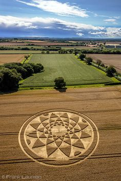 Crop Circle at Bydemill Copse, near Hannington, Wiltshire. Reported 4th August