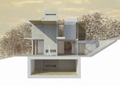 Williams residence | Nick Willson Architects