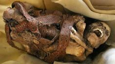 Ancient mummy found in cardboard box by cleaners in Peru, in trash outside an archeological site in the Pre-Incan city of ChanChan. Fetal position, tied with a rope. Vintage Oddities, Forensic Anthropology, Black Death, Mystery Of History, Antique Illustration, Archaeological Site, Prehistory, Forensics, Ancient Artifacts