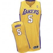 defecf35c NBA Los Angeles Lakers Jersey   Robert Horry  5 Throwback Stitched Men s  Gold Jersey Robert