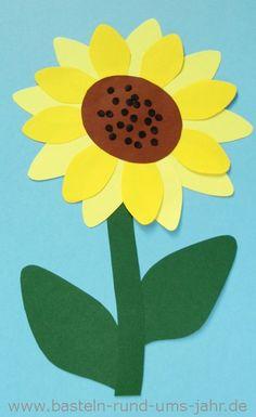 Sonnenblume aus Tonpapier basteln in den Farben sonnegelb, gelb mit grünem Stil und Sonnenblumenkernen