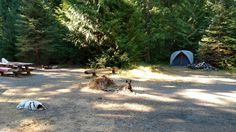 Dogs bikes and car camping with the kids at a campsite with a lot of Native American history. #camping #hiking #outdoors #tent #outdoor #caravan #campsite #travel #fishing #survival #marmot http://bit.ly/2wsp0YL
