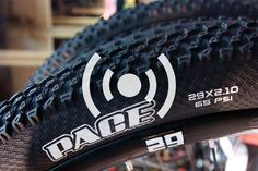 29ers are back! Or, maybe they never went away...
