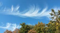 #HeyMeteoFrance Cirrus dans le ciel de Reims. Pic @seb_weather (16/10/2016)
