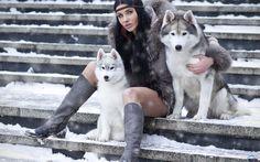 зима девушка хаски: 11 тыс изображений найдено в Яндекс.Картинках