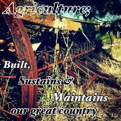 an industry that built, sustains and maintains our great country. Country Strong, Country Life, Country Girls, Agriculture Quotes, Agriculture Farming, Ag Quote, Farm Kids, Farmer's Daughter, Ranch Life