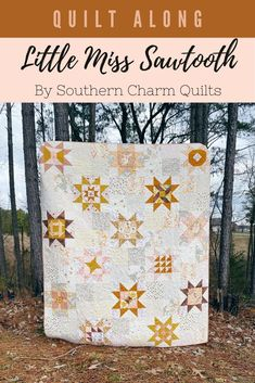 Sign Up for Little Miss Sawtooth Quilt Along - Blog | Southern Charm Quilts Star Quilt Blocks, Star Quilts, Rag Quilt, Scrappy Quilts, Easy Quilts, Quilting Projects, Quilting Designs, Low Volume Quilt, Charm Quilt