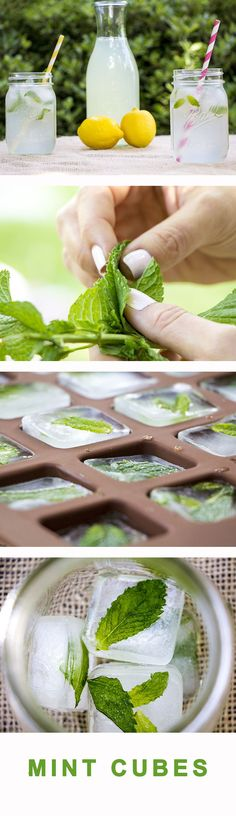 Make ordinary ice cubes into delicious, refreshing and pretty summer treats...perfect for any backyard celebration! ==