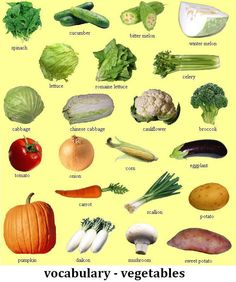 542066_240052706095197_646332630_n Different Fruits And Vegetables, List Of Vegetables, Veggies, Weird Fruit, Food Vocabulary, English Vocabulary, Vegetable Pictures, Toddler Arts And Crafts, Winter Melon