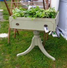 Old drawer & table base repurposed into a planter. Great idea for a fairy garden!