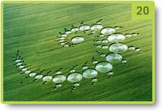 "Detail of the crop circle named ""Julia set"" - Stonehenge - July 1996"