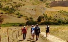 Vi proponiamo ben 9 itinerari di cammini in Italia da fare sia a piedi che in bici per scoprire angoli sconosciuti, viaggiando con lentezza.