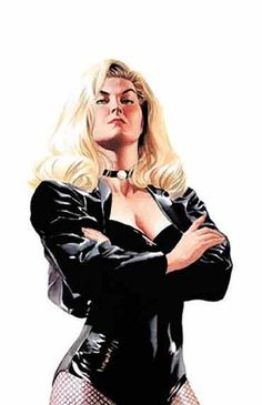 Fashion and Action: Black Canary Art Gallery: Note black choker in some incarnations (This is Alex Ross) Dc Comics Characters, Dc Comics Art, Comics Girls, Book Characters, Alex Ross, Comic Book Artists, Comic Artist, Comic Books, Star Trek