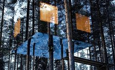 mirrors, sweden, nature, architectur, tree houses
