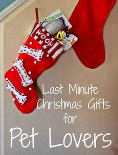 Last Minute Christmas Gifts for Pet Lovers #shop #HappyAllTheWay #cbias  see www.allbargainsanddiscounts.com for all your Christmas needs.