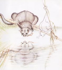 Julie Vivas illustrations from Possum Magic 2 Australian Animals, Australian Artists, Possum Magic, Little Mac, Children's Book Illustration, Book Illustrations, Forest Animals, Art Activities, Vintage Prints