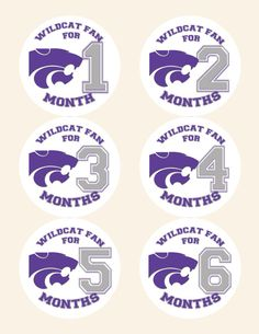 Kansas State University KSU Wildcat Baby Monthly Stickers on Etsy, $9.00