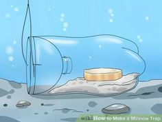 Image titled Make a Minnow Trap Step 8