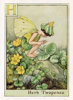 Herb Twopence Alphabet Letter H Flower Fairy Vintage Print, c.1940 Cicely Mary Barker Book Plate Illustration.