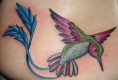 Realistic Hummingbird Tattoos | Tattoos > Isaac Bills > Page 2 > Close up view of hummingbird