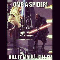 Omg a spider kill it mall