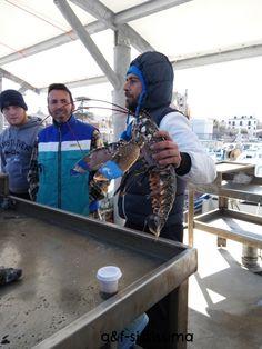 acqua e farina-sississima: Sicilia Occidentale (prima parte)