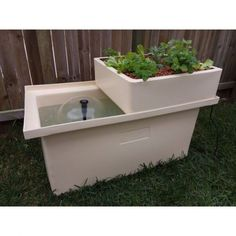 patio aquaponics system with 200l fish tank and grow bed