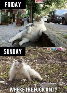 lol, cracked out Sunday!!