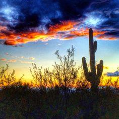 Sunset Catalina Foothills Tucson