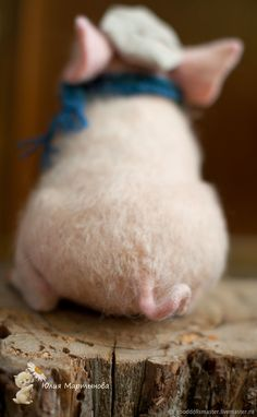 Oh my goodness! Cute Funny Animals, Cute Baby Animals, Animals And Pets, Cute Dogs, Farm Animals, Cute Baby Pigs, Cute Piglets, Cute Babies, Piggies In A Blanket
