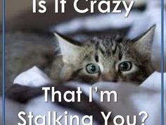 Are you a stalker