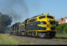 Net Photo: Victorian Railways at Melbourne, Australia by Steve Molloy Diesel Locomotive, Steam Locomotive, Melbourne Australia, Diesel Engine, Planes, Around The Worlds, Journey, Victorian, Train