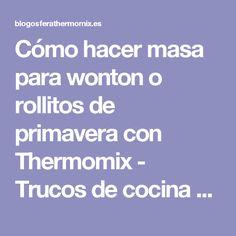 Cómo hacer masa para wonton o rollitos de primavera con Thermomix - Trucos de cocina Thermomix Trucos de cocina Thermomix