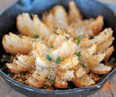 Grilled Blooming Onion from #GirlsCanGrill