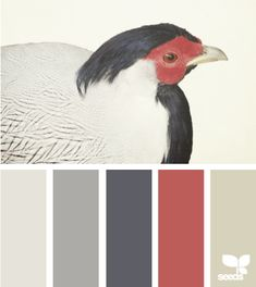 Americana Palette Inspiration - can be used for Rustic, Country or Modern palette