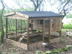 High quality chicken houses with runs - most popular poultry house