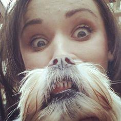 Dog Beards: Dog Owners Respond to The Cat Bearding Meme