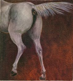 cavallo 4