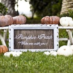 white pumpkins for a fall wedding.... a must have for me!