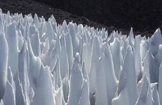 "this beautiful knife-like snow helps scientist to understand how should we do during global warming. it call ""penitentes"", means a person with deeply regret. interesting named. ------Nature Blows My Mind! The Strange Snow Formations Called Penitentes : TreeHugger."